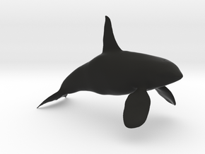 Orca-Male-Hollow in Black Natural Versatile Plastic: Extra Large