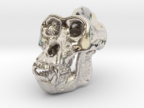 Gorilla Skull in Rhodium Plated Brass