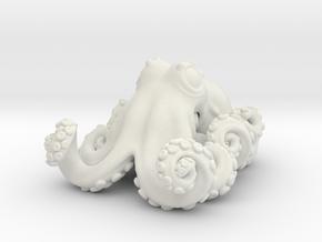 Deep sea octopus (Graneledone boreopacifica) in White Natural Versatile Plastic: Small