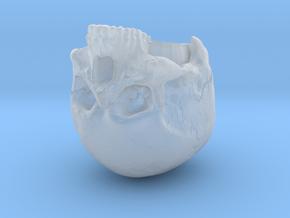 SL01-Head-01b in Smooth Fine Detail Plastic