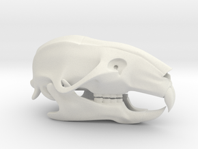 Mouse Rat Skull 3D Printed Model in White Natural Versatile Plastic