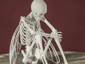 Fairy Skeleton in White Natural Versatile Plastic
