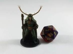 Elven Archdruid in Smooth Fine Detail Plastic