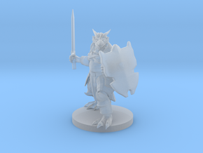 Heavy Dragonborn Paladin in Smooth Fine Detail Plastic