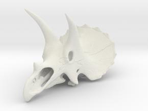 Triceratops - dinosaur skull replica in White Natural Versatile Plastic: 1:24