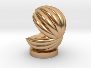 shell in Polished Bronze: Medium