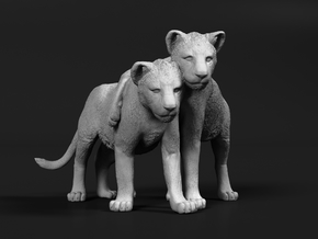 Lion 1:32 Cubs distracted while playing in Smooth Fine Detail Plastic