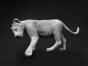 Lion 1:32 Cub reaching for something in Smooth Fine Detail Plastic