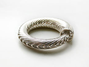 Ouroboros Torus in Polished Silver