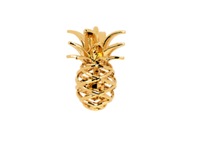 Pineapple Turtle Pendant in Polished Brass