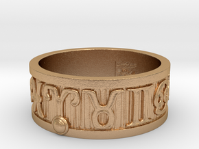 Zodiac Sign Ring Aries / 22.5mm in Natural Bronze