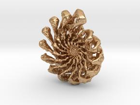 Wild Ammonite in Natural Bronze