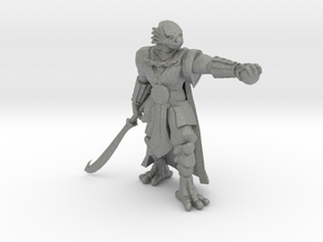 Dragonborn Barbarian in Gray Professional Plastic