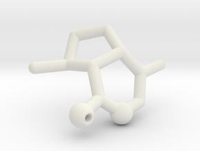 Catnip Pendant - Your Cat will love it! in White Natural Versatile Plastic