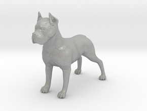 Dog in Aluminum