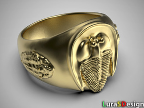Trilobite Fossil Ring in Polished Bronzed-Silver Steel