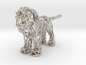 Lion (adult male) in Platinum