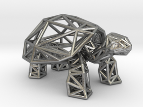 Galapagos Giant Tortoise in Natural Silver