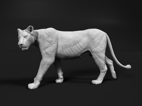 Lion 1:25 Walking Lioness 2 in White Natural Versatile Plastic