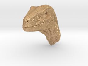 raptorkopfclosedmouth in Natural Bronze