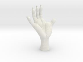 3 inch Opossum Foot- Plastics & metals in White Natural Versatile Plastic