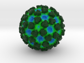 Venezuelan Equine Encephalitis Virus in Natural Full Color Sandstone