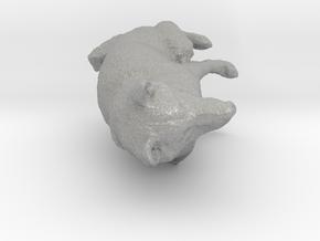 Shiba Inu Dog_6CM in Aluminum