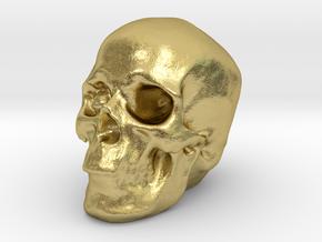 Skull 3DXS in Natural Brass