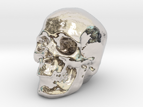 Skull 3DXS in Rhodium Plated Brass