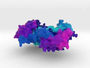 CRISPR Cmr1 in Natural Full Color Sandstone
