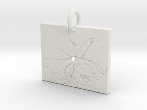 Virtual Neuron in White Natural Versatile Plastic: Extra Small
