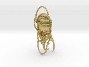 Rhinoceros Beetle - Chalcosoma in Natural Brass