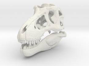 Tyrannosaurus - dinosaur skull replica in White Natural Versatile Plastic: 1:24