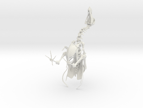 DODO Skeleton in White Natural Versatile Plastic: Medium