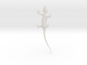 Lizard_3D_hollow in White Natural Versatile Plastic