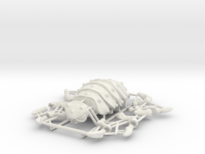 Articulated Predominant Isopod A Ball-Jointed Kit in White Natural Versatile Plastic