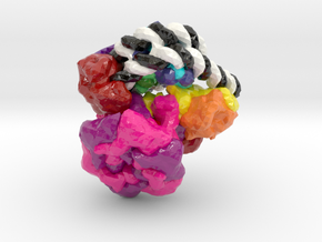Chromatin Remodeler Nucleosome Complex (Large) in Glossy Full Color Sandstone