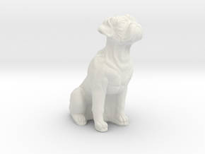 Boxer dog in White Natural Versatile Plastic