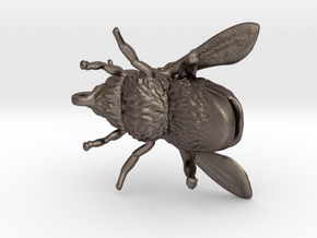 Honey Bee - Pendant - Vessels in Polished Bronzed-Silver Steel