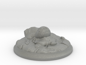 Fire Dragon Egg - 40 mm Base for Tabletop Games in Gray Professional Plastic