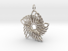5 Point Nautilus Rings - 4cm in Rhodium Plated Brass