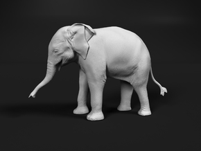 Indian Elephant 1:20 Standing Female Calf in White Natural Versatile Plastic