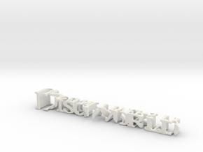 3dWordFlip: Discworld/UnseenUniversity in White Natural Versatile Plastic