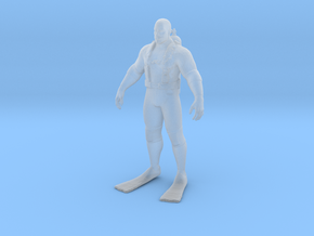 Printle C Homme 2127 - 1/87 - wob in Smooth Fine Detail Plastic