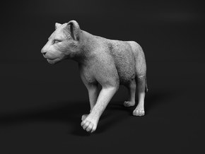Lion 1:12 Walking Cub in White Natural Versatile Plastic