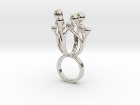 Colimo in Rhodium Plated Brass