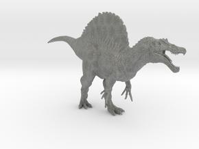 Spinosaurus 1/72 (Smaller Version) - DeCoster in Gray PA12