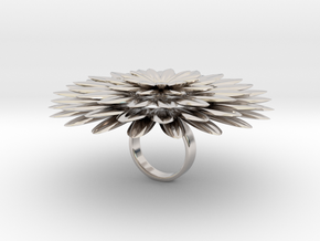 Dalilamore - Bjou Designs in Rhodium Plated Brass