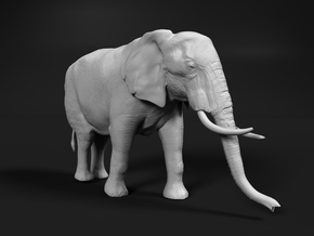 African Bush Elephant 1:9 Walking Female in White Natural Versatile Plastic
