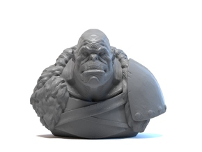 Orc chief bust in Smooth Fine Detail Plastic